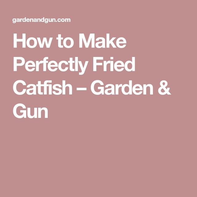 How to Make Perfectly Fried Catfish – Garden & Gun