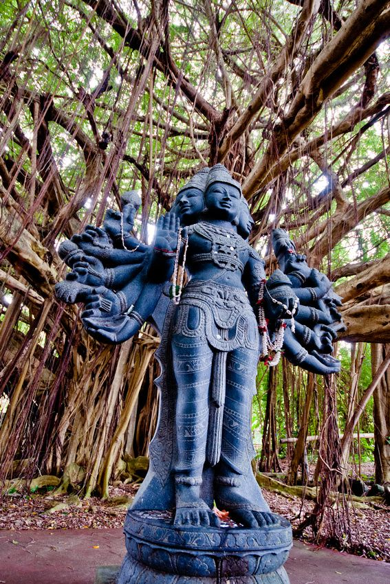 Kauai Hindu Monastery - Lord Shanmukha under the Banyan Tree. Kauai, USA.