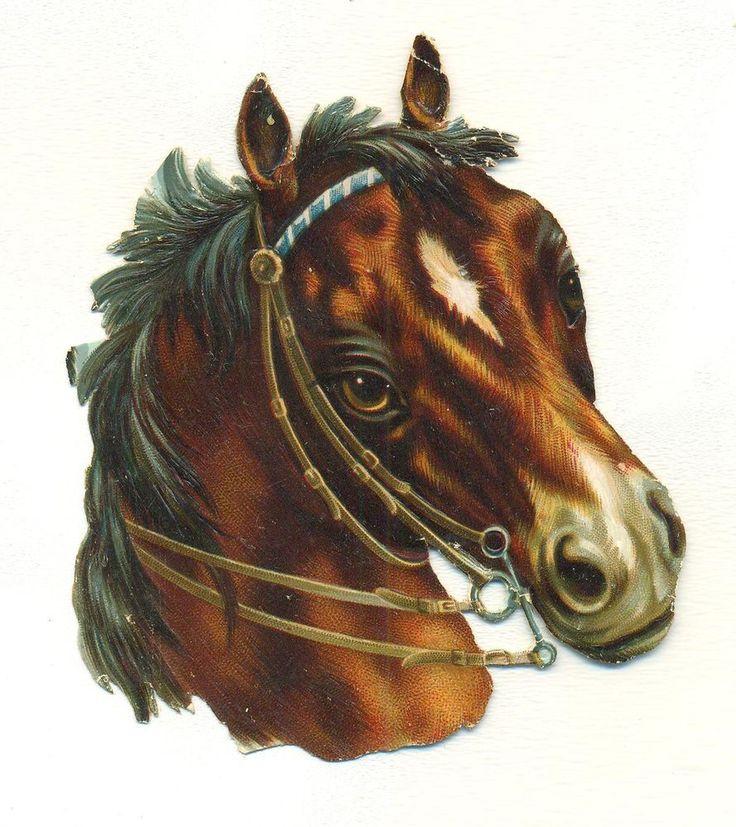 victorian scrap horse