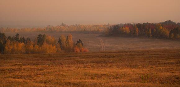Autumn fields forever...