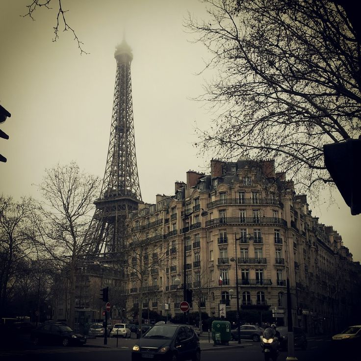 Paris: My Moveable Feast   The Free Woman