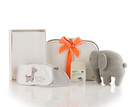 Gorgeous gender neutral baby gift - Must-Have Baby Kit. The It Kit