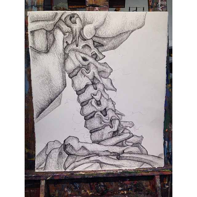 Drawing final by Sarah Reagan, 2ft x 2.5ft.  Scribble-stipple skeletal system ✒️