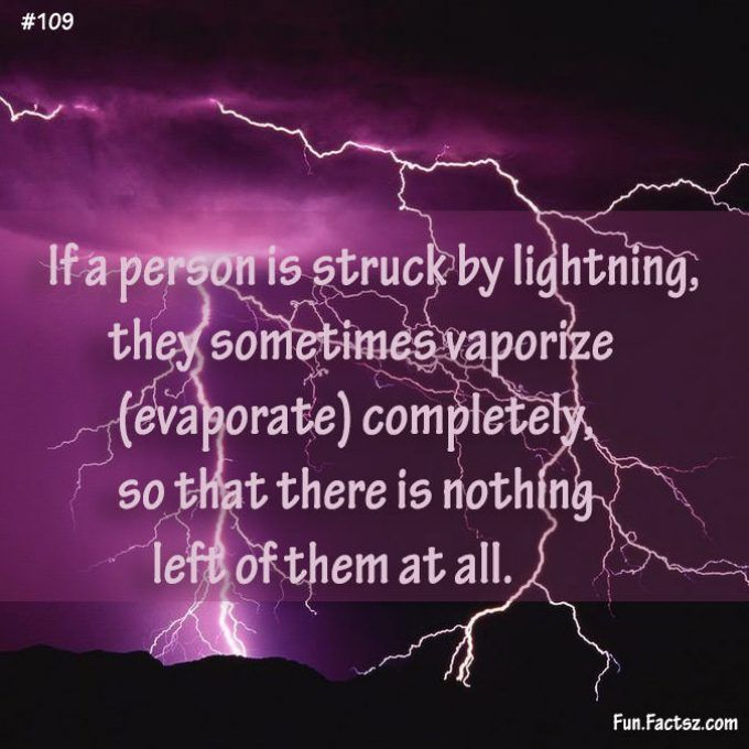 Person Struck By Lightning  #facts #lightfacts #stromfacts #factsz #funfactsz