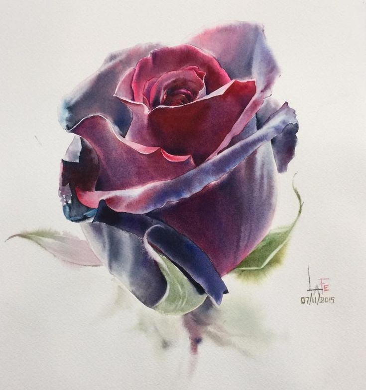 """La Fe """"Rose 07/11/2015"""", watercolor without Drawing"""