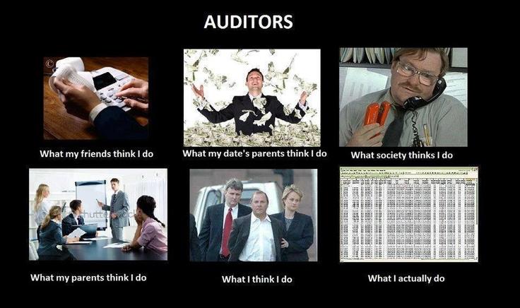 Auditors Meme Lol Accountant Jokes Nerd Stuff
