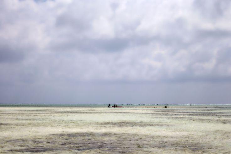 IB TREBBIEN – Farmers and fishermen
