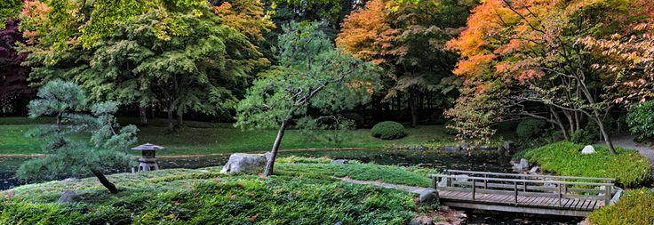 Nitobe Memorial Garden - autumn. Vancouver, BC  #Vancouver #UBC #VancouverGardens #exploreBC #veryVancouver #gardens #JapaneseGarden #exploreBCgardens #gardentourism #Canada #日本庭園