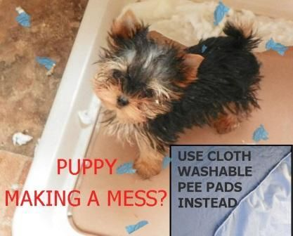 Eco-friendly Washable Puppy training pads. Dog Potty Mat, Pooch pad. Save you tons of money!  Not easily torn up like the disposable Puppy housebreaking pads. #potty #housebreaking #pets #dogs #cats