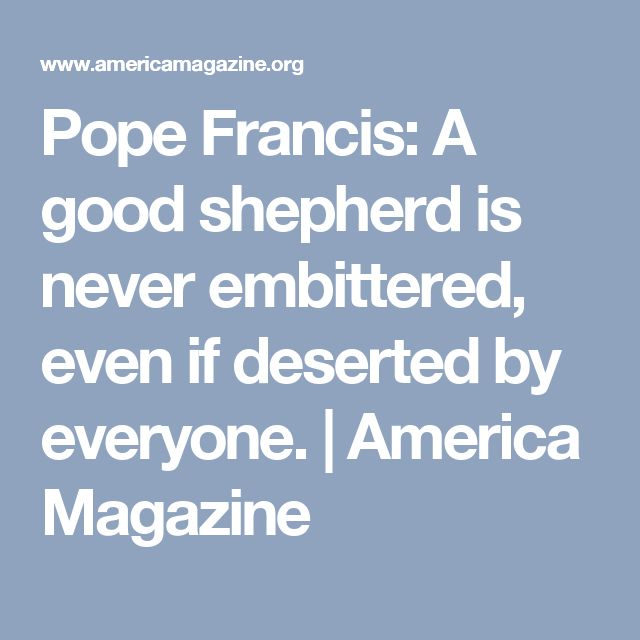 Pope Francis: A good shepherd is never embittered, even if deserted by everyone. | America Magazine
