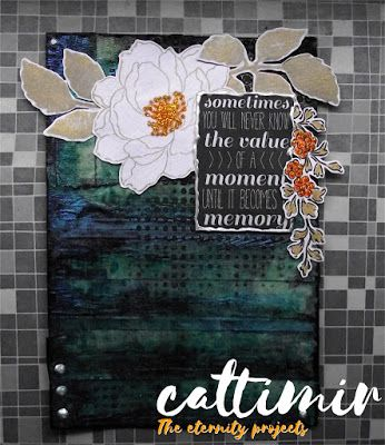 Cattimir - The eternity projects: Mixed media