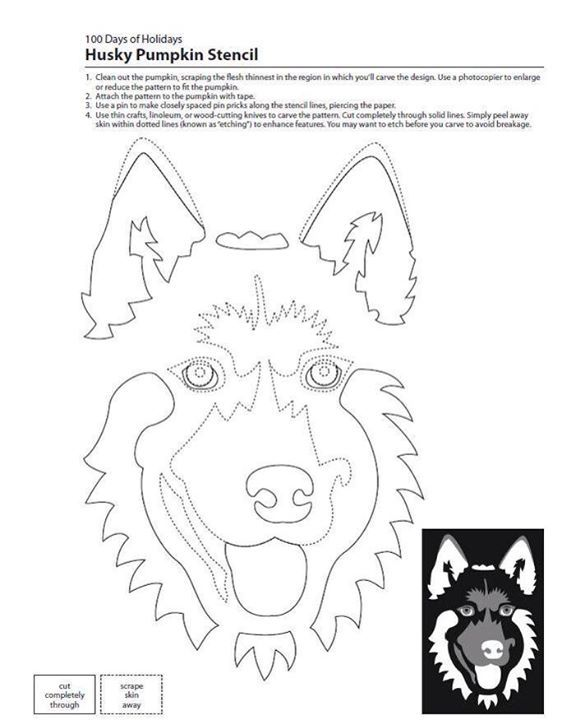 Husky Pumpkin Stencil great for Halloween from Better Homes & Gardens.  Log in to download the free pdf file.