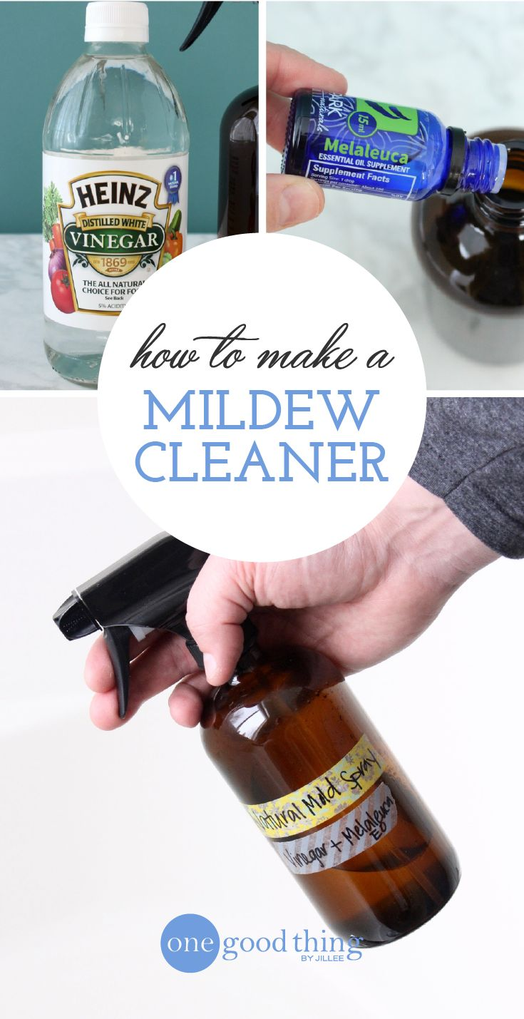 DIY Mold & Mildew Removal Spray | Sprays, Essentials and Oil