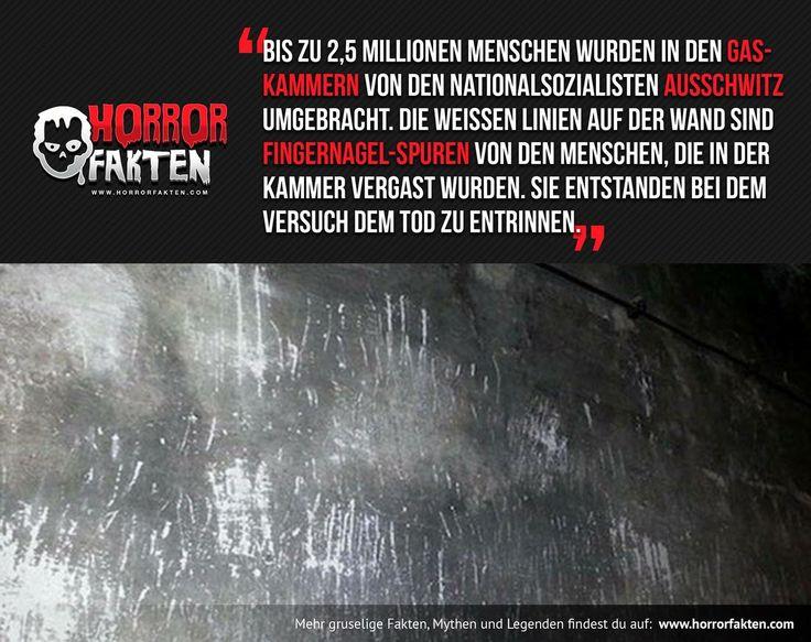 Holocaust KZ Kratzspuren