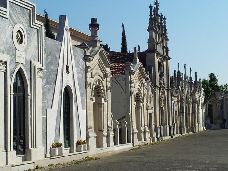 Cemetery in Aveiro