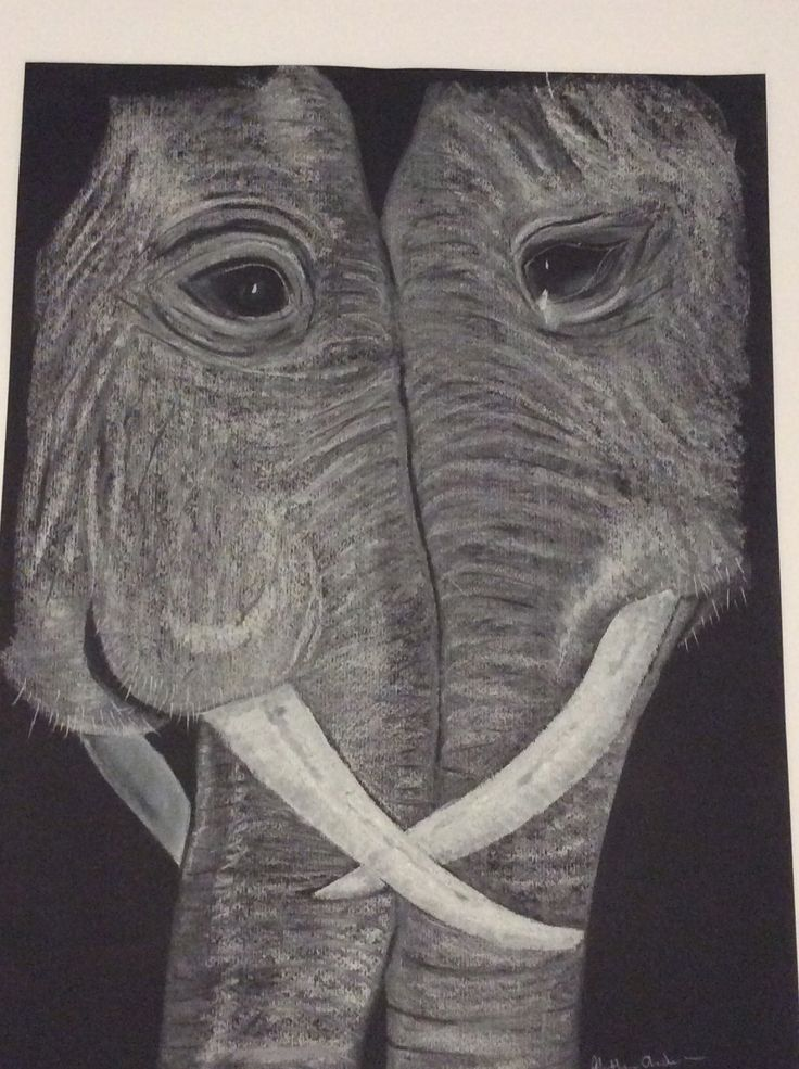 White charcoal on black paper by Heather Anderson 2014