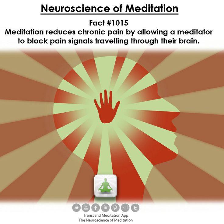 the #neuroscience of #meditation on Transcend Meditation App available on Google Play and the App Store www.facebook.com/transcendapp