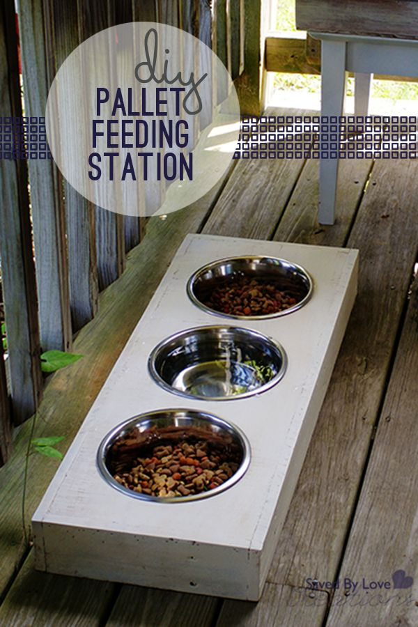 17 Best Ideas About Dog Feeding Station On Pinterest Pet