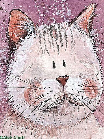 Ternurita gatito