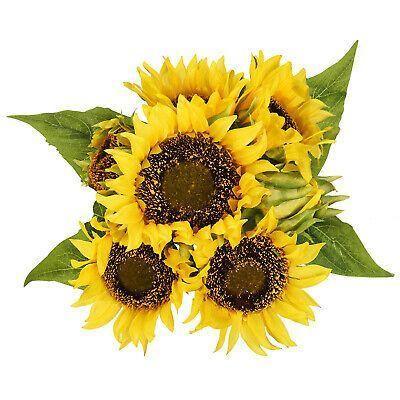 Artificial Sunflower 1 Bouquets 7 Floral Head Vantage Fake Sunflowers Home Decor Sunflower Bouquets Sunflower Home Decor Fake Hanging Plants