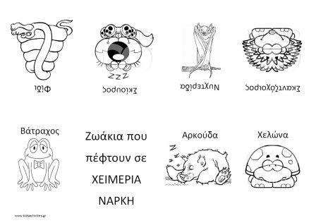 ΧΕΙΜΕΡΙΑ ΝΑΡΚΗ-ΚΑΤΑΣΚΕΥΕΣ