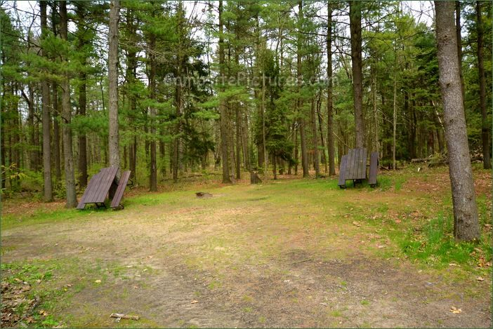 Turkey Point Provincial Park, Camping in Ontario Parks