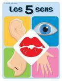 Programmation sur le thème des 5 sens avec des activités éducatives; jeux, bricolages, coloriages, histoires, comptines, chansons, fiches d'activités imprimables