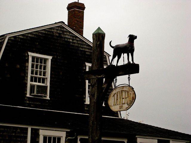 Black Dog Pub Martha S Vineyard