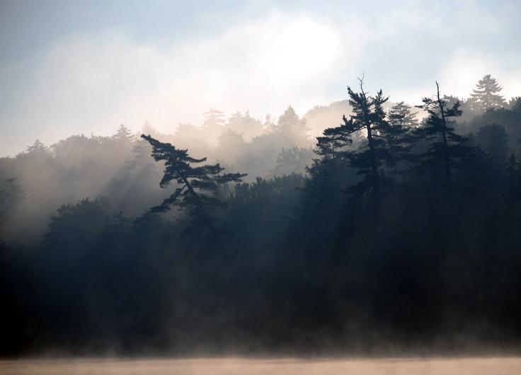 Twitchell Lake at dawn