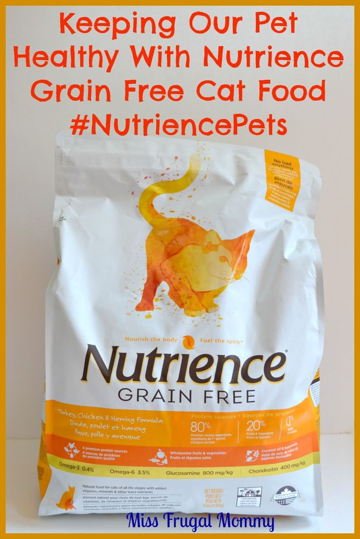 Keeping Our Pet Healthy With Nutrience Grain Free Cat Food #NutriencePets