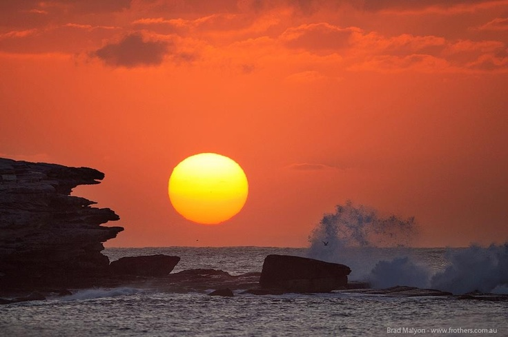 Bondi: sunrise over Ben Buckler Point.  Photo taken by Frothers Gallery Bronte.