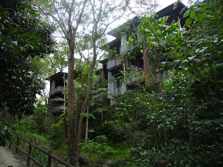Found my luxury Tree house accomodation. #airnzsunshine