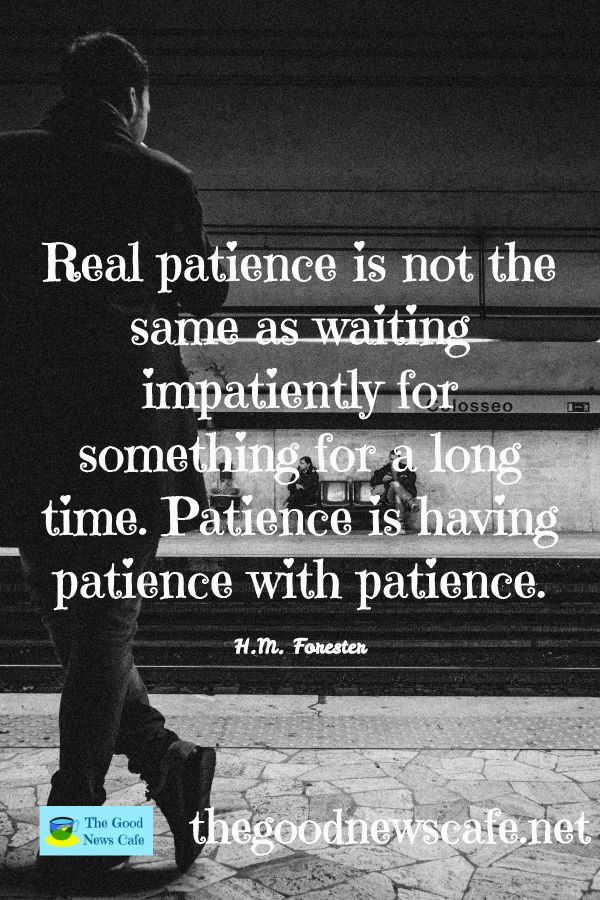 Patience Is A Virtue Patienceisavirtue Havepatience Hmforester