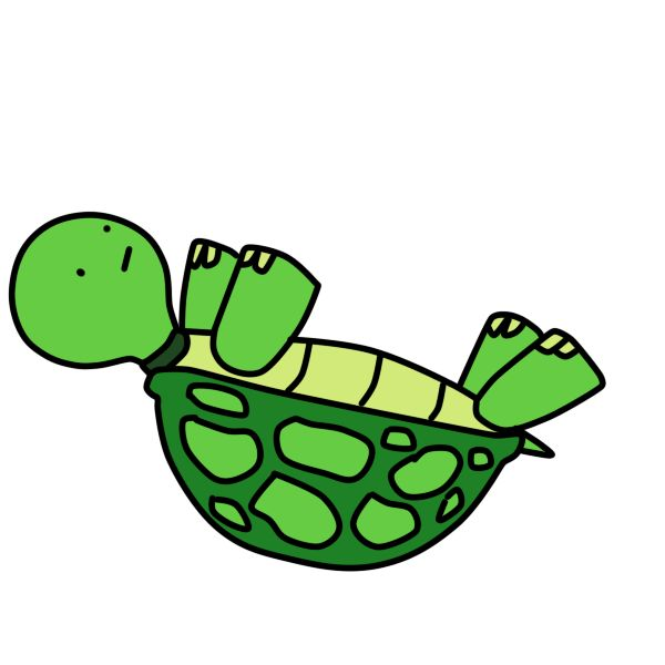 Черепахи анимация картинки