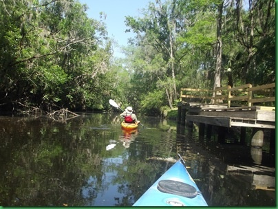 Lithia Springs Florida, blog by Sherry and David