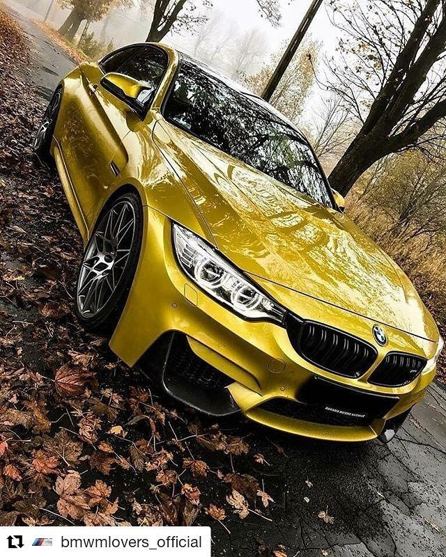 Follow My Bmw Board For More Pins Bmw Pinterest Cars Bmw And