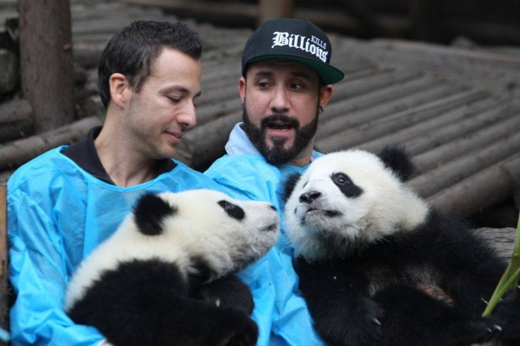Howie Dorough & AJ McLean - Members of the Backstreet Boys hold giant pandas at the Giant Panda Breeding Research Institute during their China Tour on May 30, 2013 in Chengdu, Sichuan Province of China. (Photo by ChinaFotoPress/ChinaFotoPress via Getty Images)