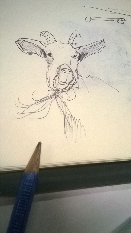 2 minutes goat in my sketchbook