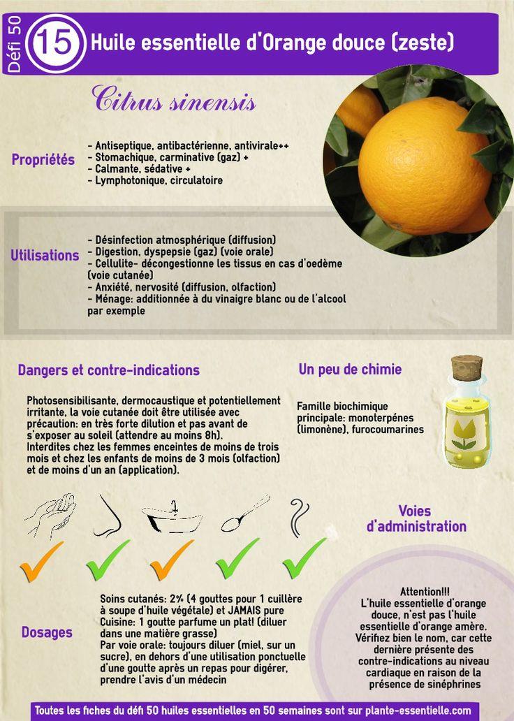 Huile essentielle orange douce : propriétés et utilisation sans danger (Citrus sinensis)