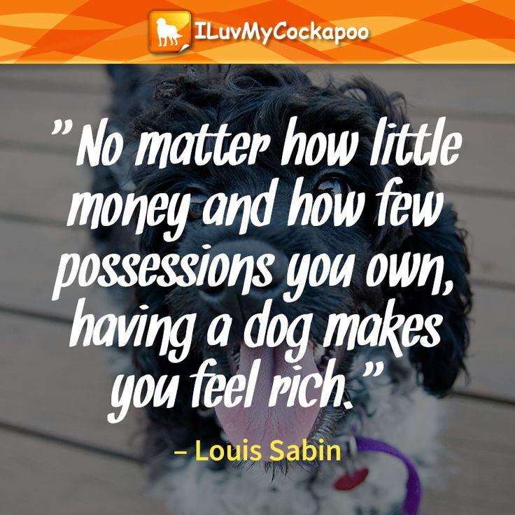 Cockapoo - Dog quote