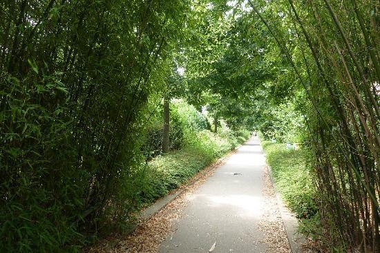 la promenade plantée, walkway in Paris