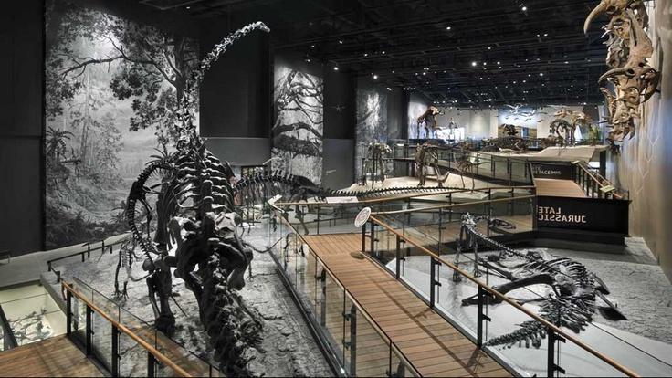 RAA - Natural History Museum of Utah at Rio Tinto Center