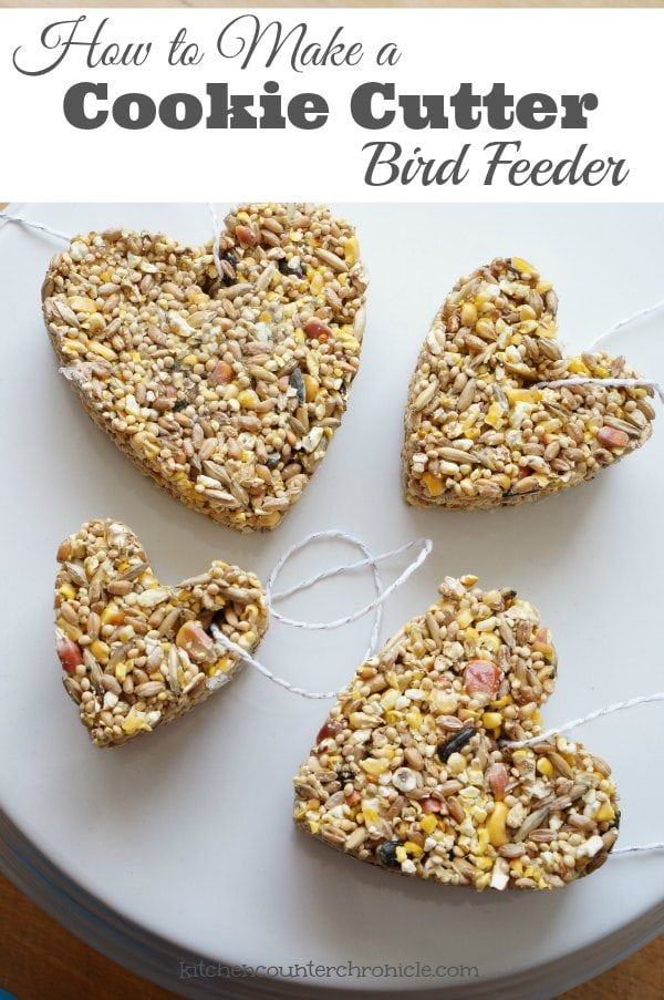 How to make a cookie cutter bird feeder - A simple project for kids. Spread the love to the winter birds with a bird feeder made of bird seed. Complete step by step instructions. Make them any shape you like and hang them in a tree in your yard or in your local park. | Nature Craft for Kids | Birds for Kids |