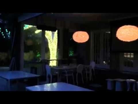 77 best string party lights installation by dallas landscape 09a5460f1514e4d80486f9a115cc8d81 lantern lighting tree lightingg aloadofball Images
