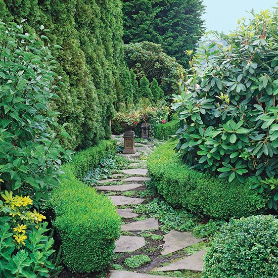 One of the most common ways to use evergreens is as a screen in the landscape.