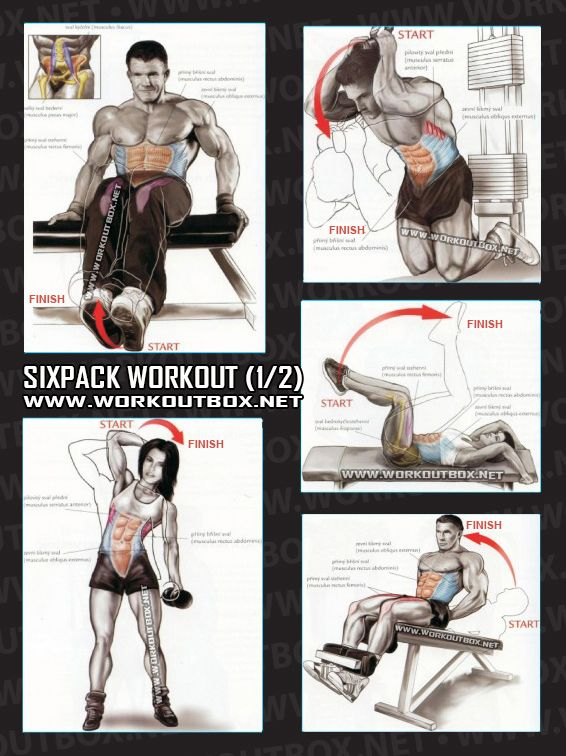 Sixpack Workout Part 2   Healthy Fitness Exercises Gym Low Abs   Yeah We Train