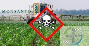Over One million People Ask Government to Block Bayer-Monsanto Merger