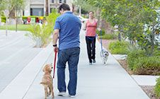 Leash Pulling -  Do you find that going for a walk with your dog often ends with you being pulled around? Click through for training tips! #DogTraining
