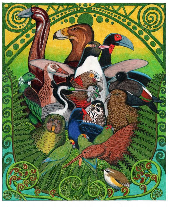 New Zealand Birds by NocturnalSea.deviantart.com on @deviantART