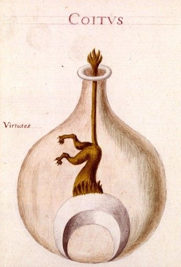alchemical drawings from Sapientia veterum philosophorum, sive doctrina eorumdem de summa et universali medicina , 18th century - National Library of France